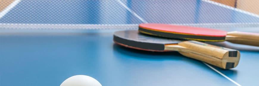 5 Migliori Tavoli da Ping Pong per Esterno