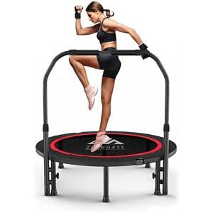 Zehnhase Trampolino Fitness